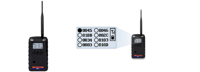 Echoview Remote