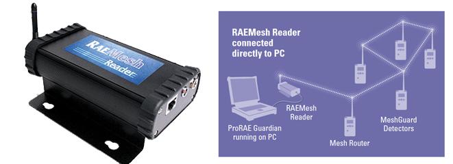 RAEMesh Reader